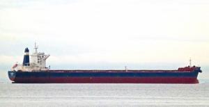 Photo of GOLDEN AMREEN ship