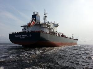 Photo of MARLIN AMMOLITE ship