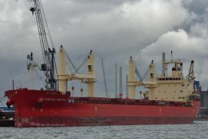 Photo of FEDERAL BRISTOL ship