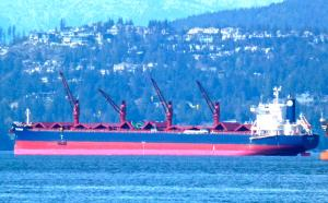 Photo of BELFOREST ship