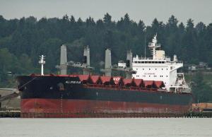 Photo of ALL STAR ATLAS ship
