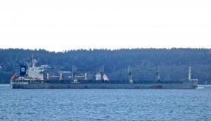 Photo of WESTERN PANAMA ship
