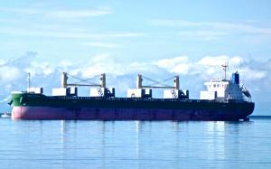 Photo of MERIT TRADER ship