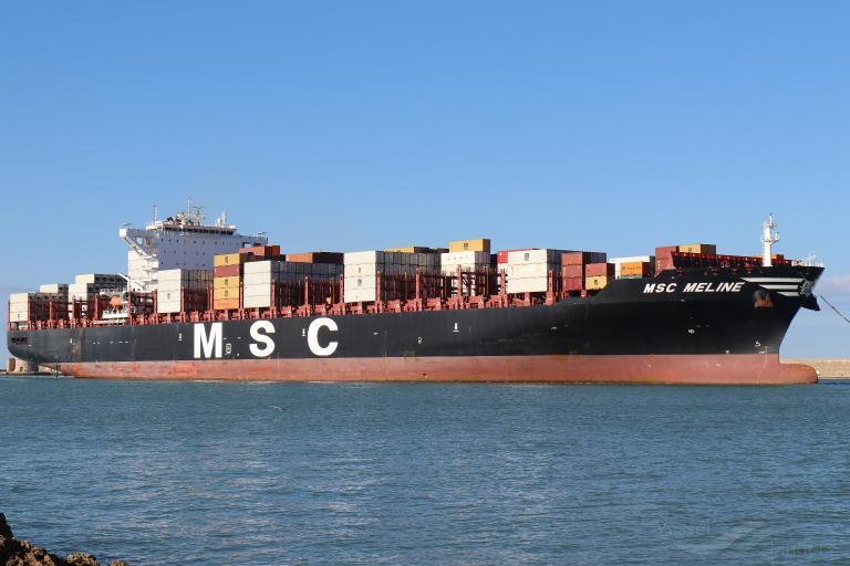 MSC MELINE photo