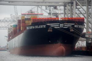 Photo of MSC SOFIA CELESTE ship