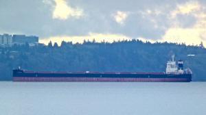 Photo of PELOREUS ship
