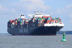 Photo of YM WITNESS ship