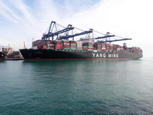 Ym Wellness Container Ship Details And Current