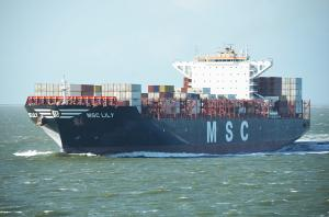 Photo of MSC LILY ship