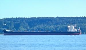 Photo of HISUI HORIZON ship