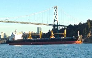 Photo of HL HADONG ship