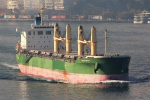 Photo of INDIGO SPICA ship