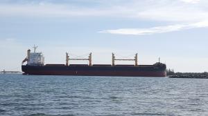 Photo of METSOVO ship