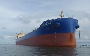 Photo of GLOVIS DAYLIGHT ship