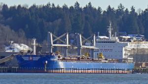 Photo of TIGER HEBEI ship