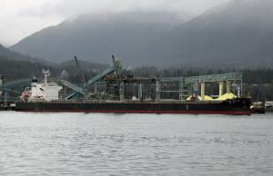 Photo of PACIFIC CONSTANT ship