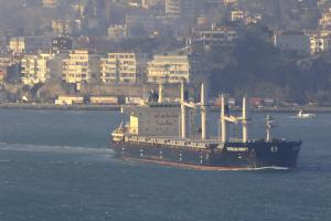 Photo of INTERLINK DIGNITY ship