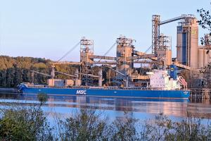 Photo of ALAM MOLEK ship