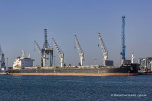 Photo of TOMINI UNITY ship