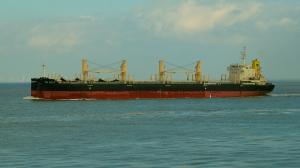 Photo of TS GOLF ship