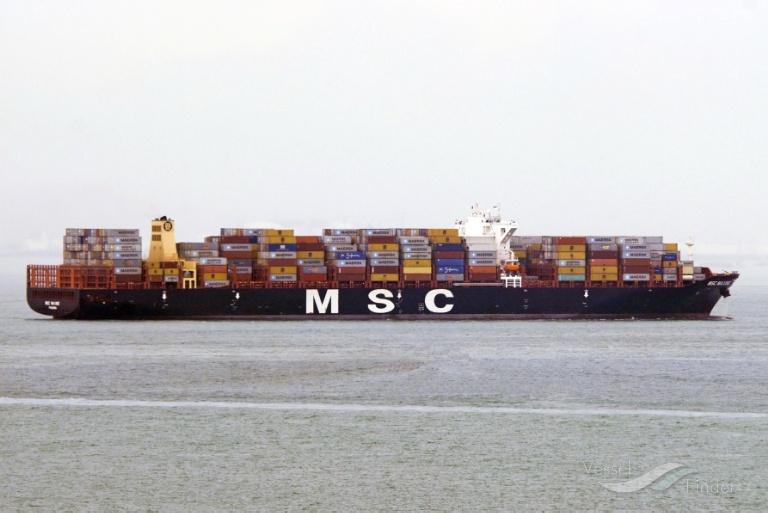 MSC MAXINE photo