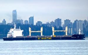 Photo of DARYA TIANA ship