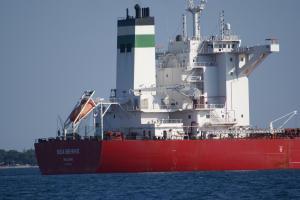 Photo of GOLDEN BEHIKE ship