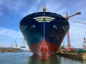 Photo of MSC EARTH ship