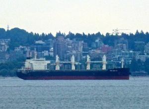 Photo of XING ZUN HAI ship