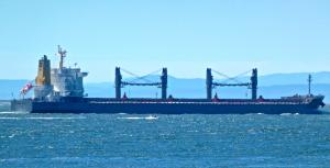 Photo of PAOLO TOPIC ship
