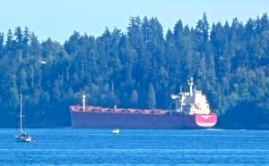 Photo of EMERALD BAISHA ship