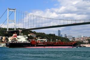 Photo of MTM SAVANNAH ship