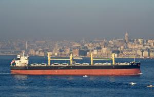 Photo of TAI SUMMIT ship