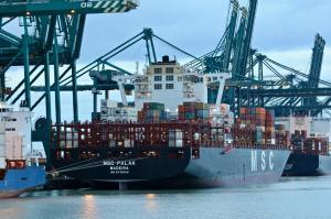 Photo of MSC PALAK ship