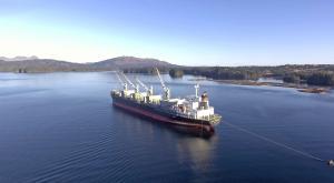 Photo of PEGASUS OCEAN ship