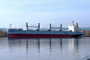Photo of ANTE TOPIC ship