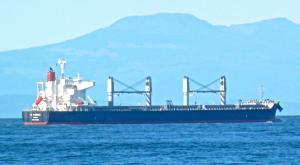 Photo of IC PHOENIX ship