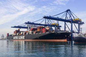 Photo of NYK SWAN ship