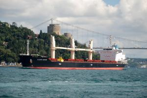 Photo of SIDER MOON ship