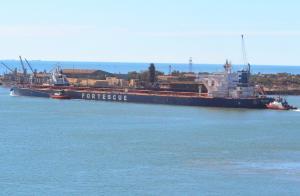 Photo of FMG GRACE ship