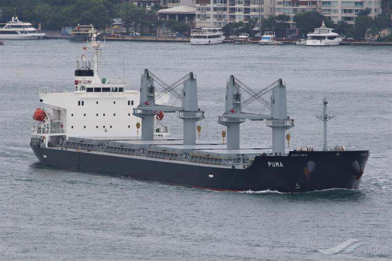 PUMA, Bulk Carrier - Détails du bateau et situation actuelle - IMO ...