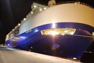 Photo of GLOVIS SUN ship