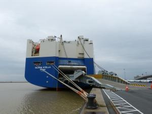Photo of GLOVIS STELLA ship