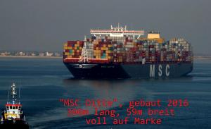 Photo of MSC DITTE ship