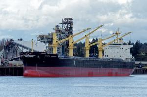 Photo of DESERT HARRIER ship