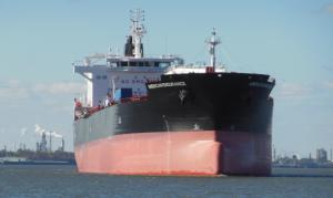 Photo of AMERICAN ENDURANCE ship