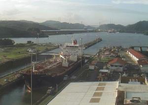Photo of AMERICAN FREEDOM ship