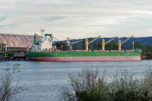 Photo of GOLDEN TRADER ship