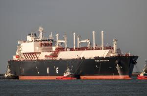 Photo of FLEX ENDEAVOUR ship