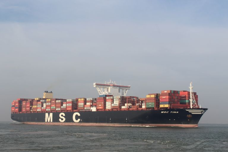 MSC TINA photo